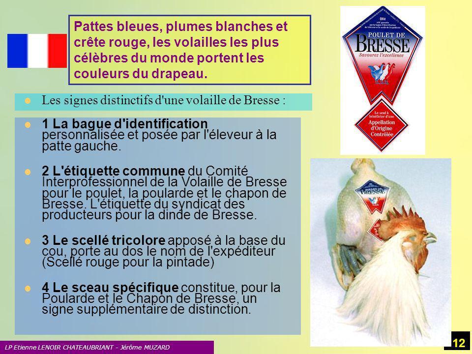 Les signes distinctifs d une volaille de Bresse :