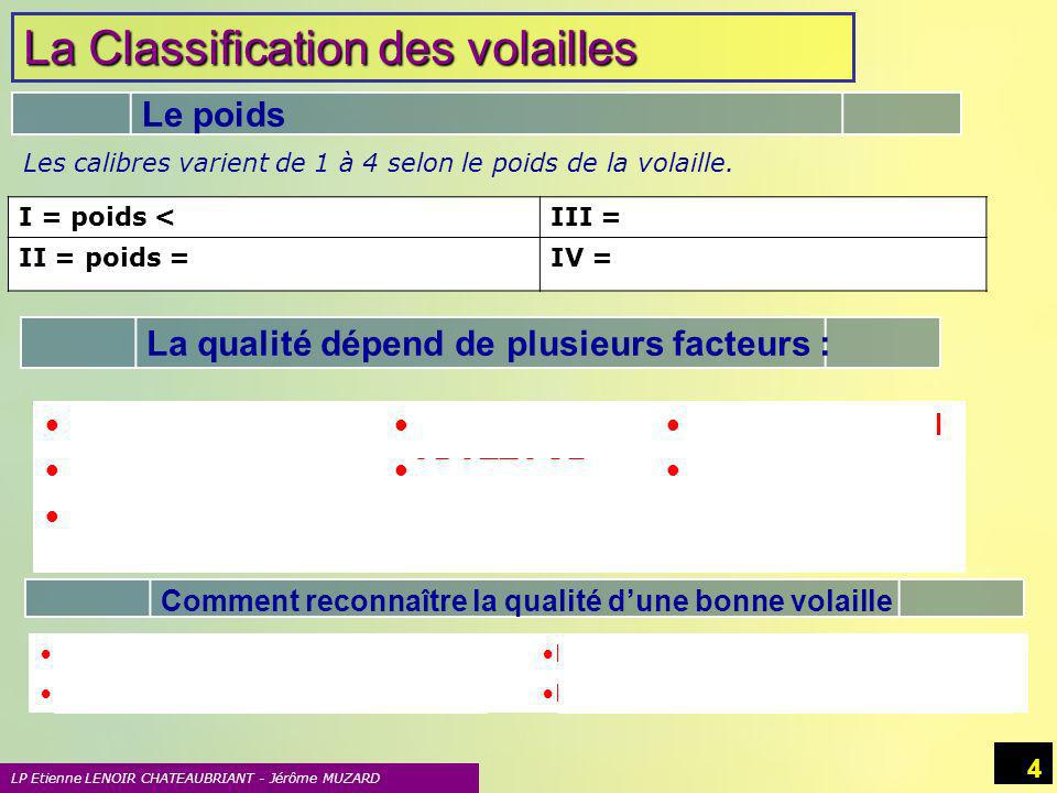 La Classification des volailles