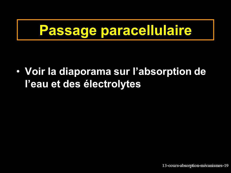 Passage paracellulaire