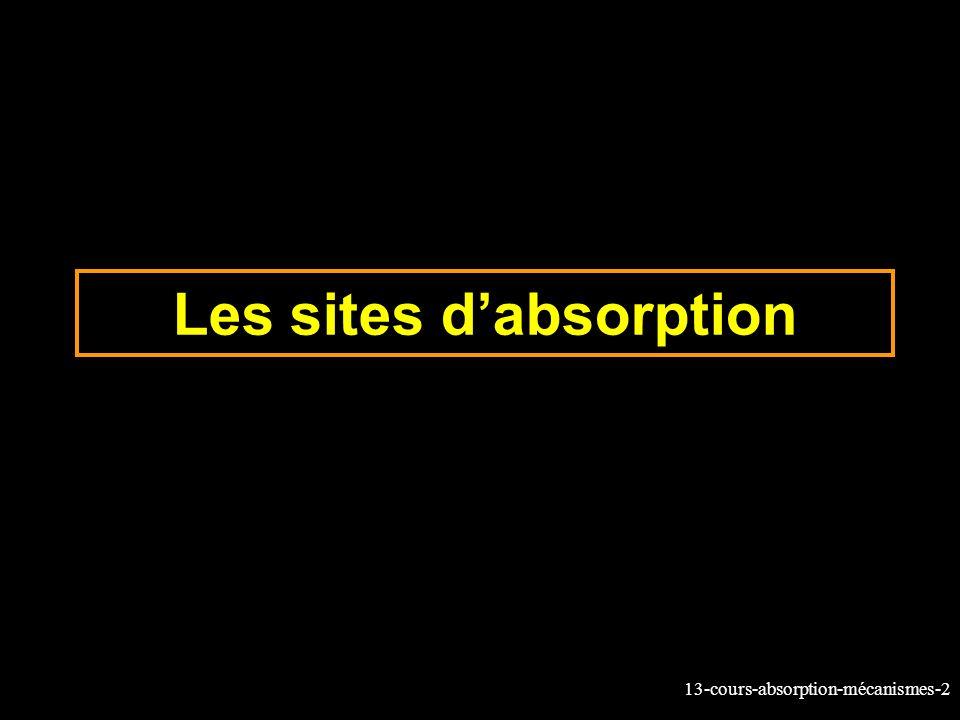 Les sites d'absorption