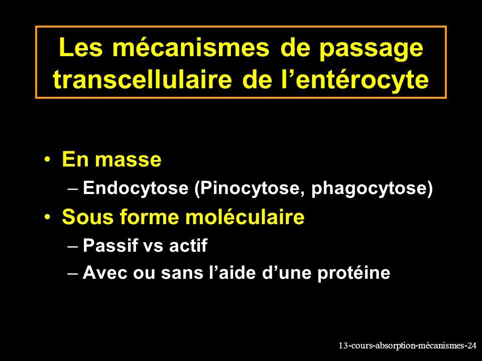 Les mécanismes de passage transcellulaire de l'entérocyte