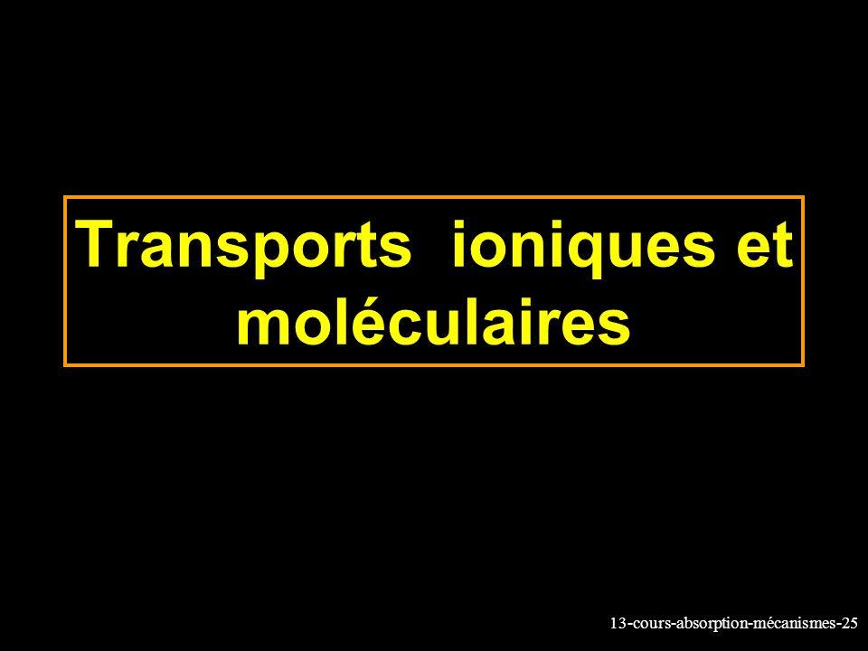 Transports ioniques et moléculaires