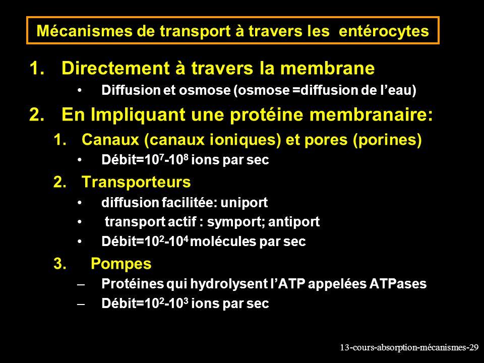 Mécanismes de transport à travers les entérocytes