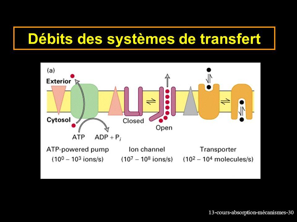 Débits des systèmes de transfert