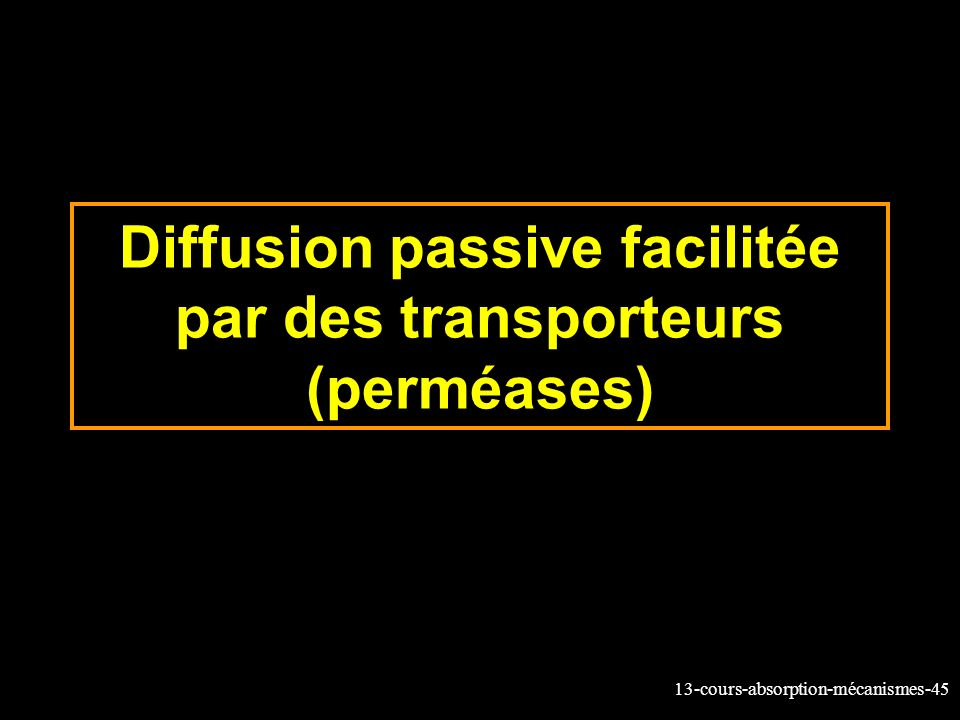 Diffusion passive facilitée par des transporteurs (perméases)