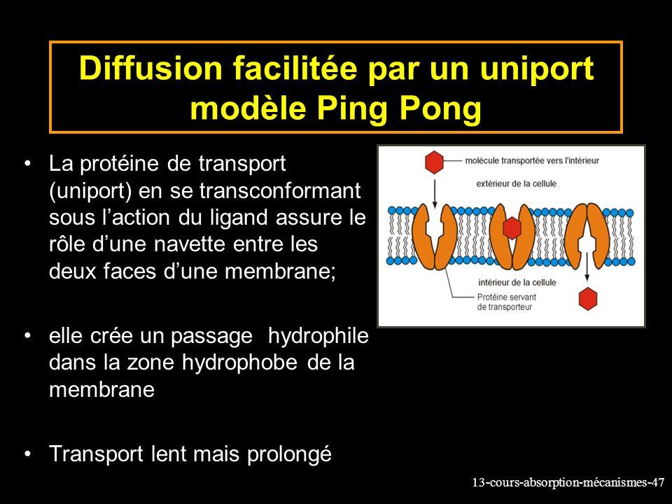 Diffusion facilitée par un uniport modèle Ping Pong