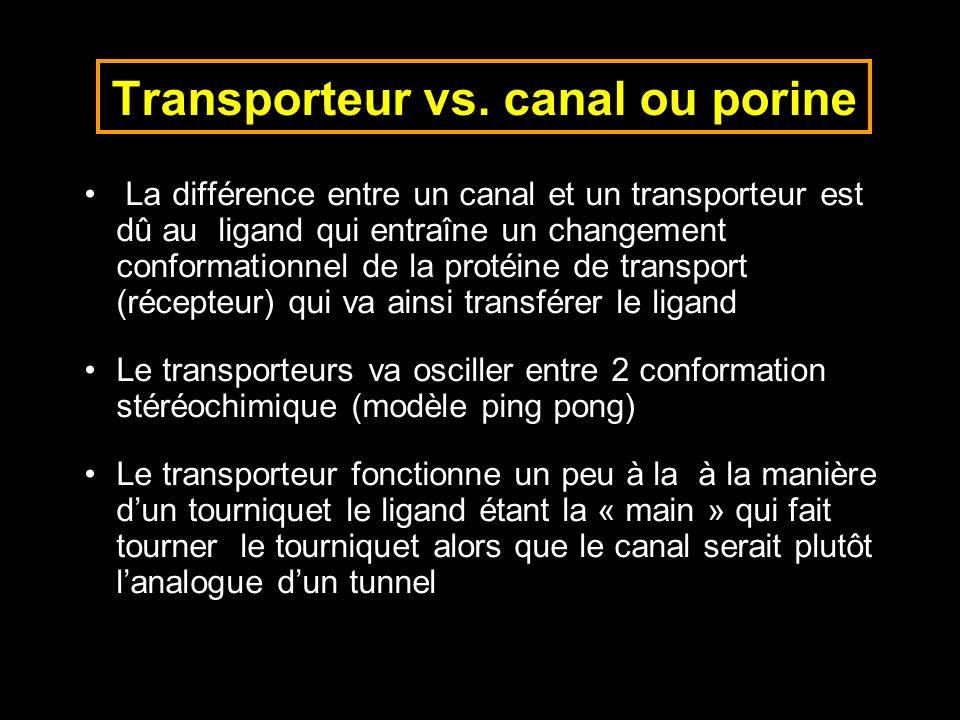 Transporteur vs. canal ou porine