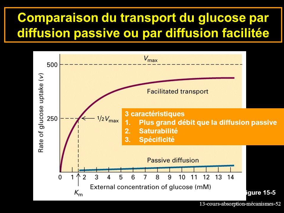 Comparaison du transport du glucose par diffusion passive ou par diffusion facilitée