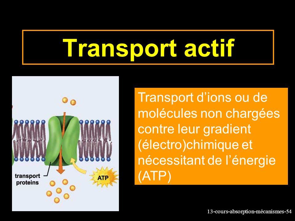 Transport actif Transport d'ions ou de molécules non chargées contre leur gradient (électro)chimique et nécessitant de l'énergie (ATP)