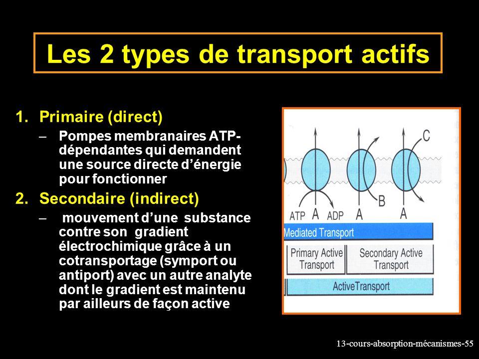 Les 2 types de transport actifs