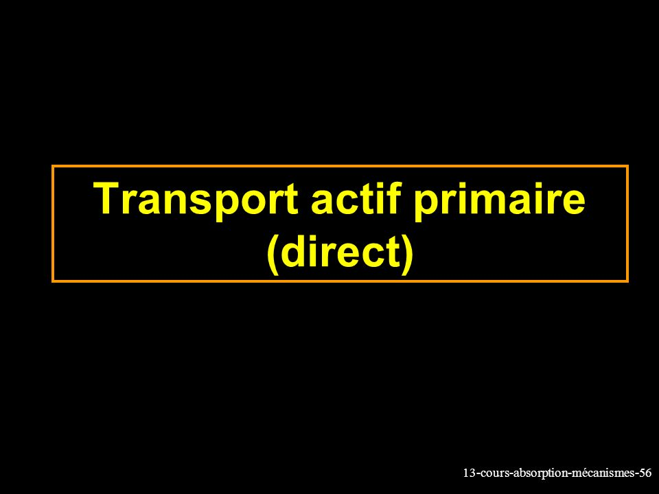 Transport actif primaire (direct)