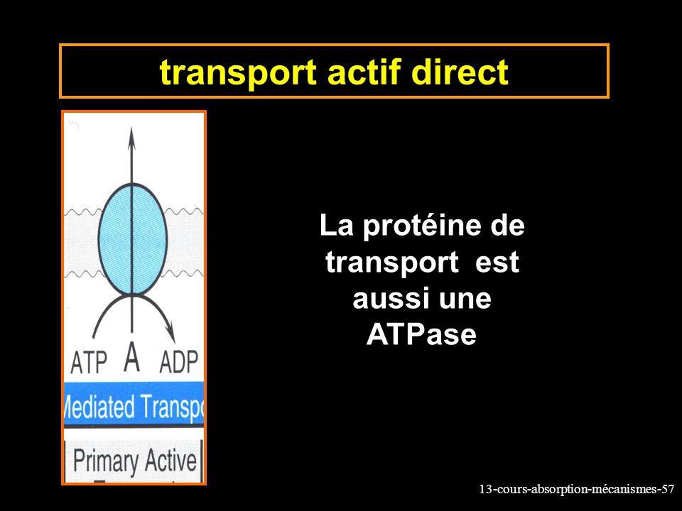 transport actif direct