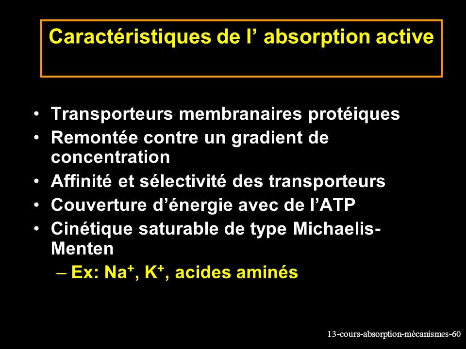 Caractéristiques de l' absorption active