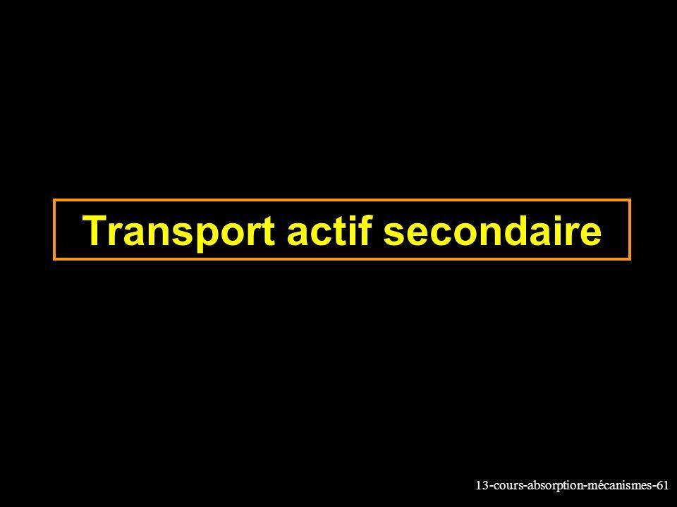 Transport actif secondaire