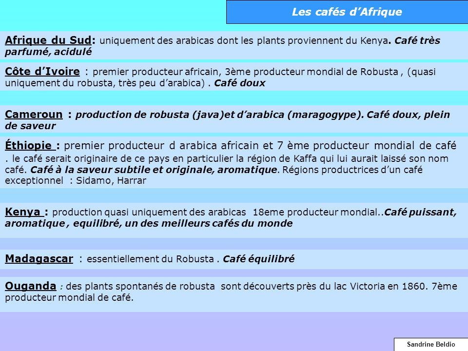 Madagascar : essentiellement du Robusta . Café équilibré