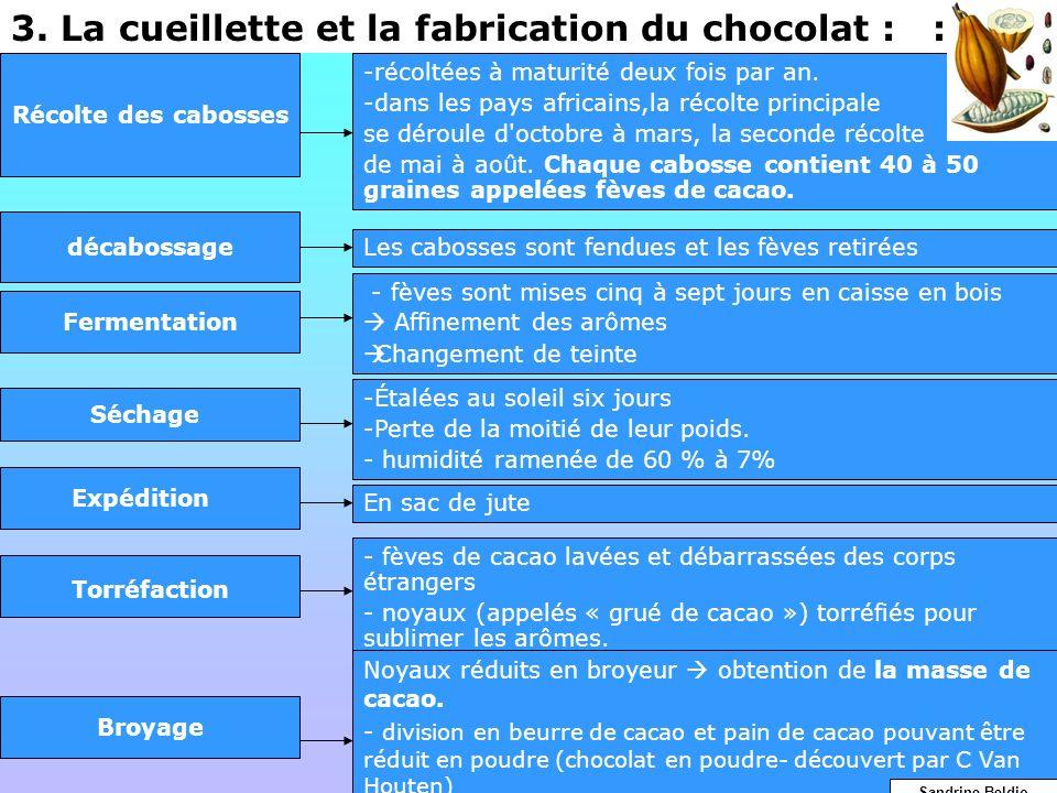 3. La cueillette et la fabrication du chocolat : :