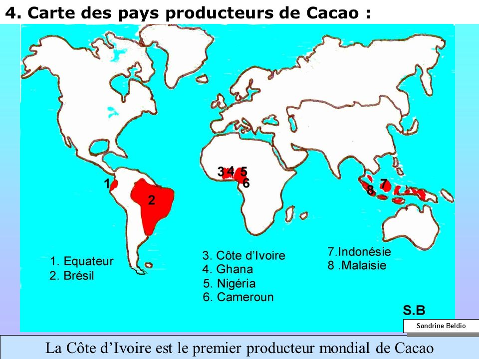 La Côte d'Ivoire est le premier producteur mondial de Cacao