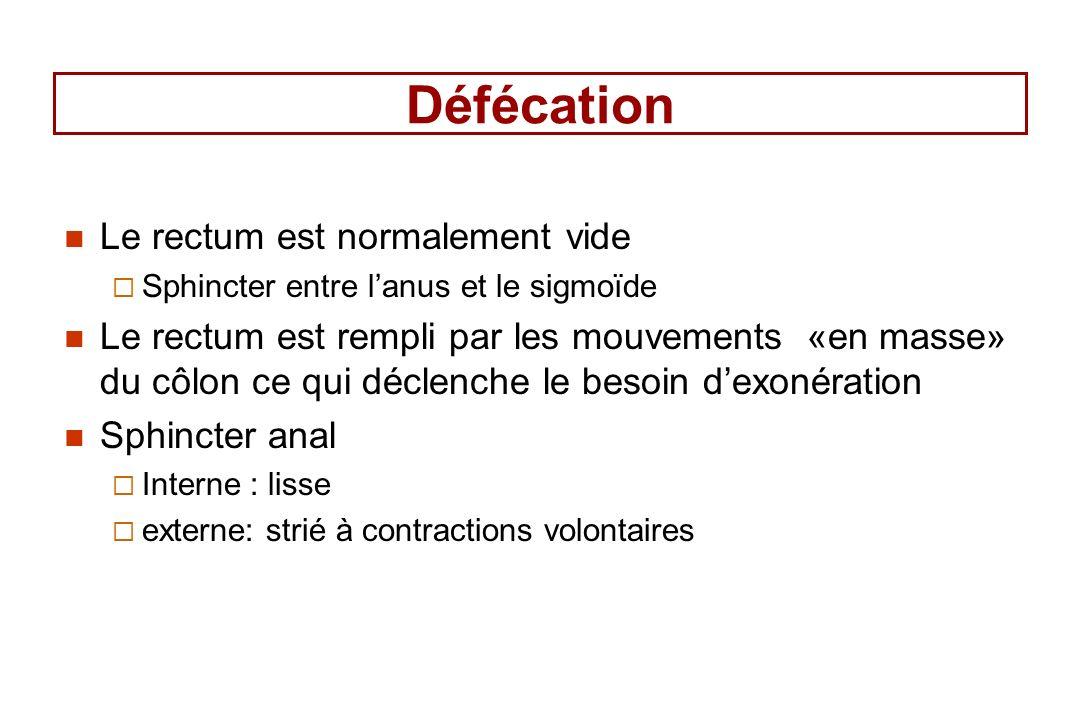 Défécation Le rectum est normalement vide