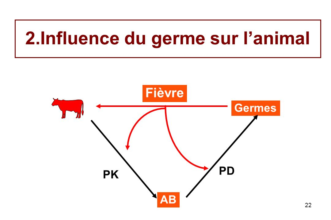 Influence du germe sur l'animal