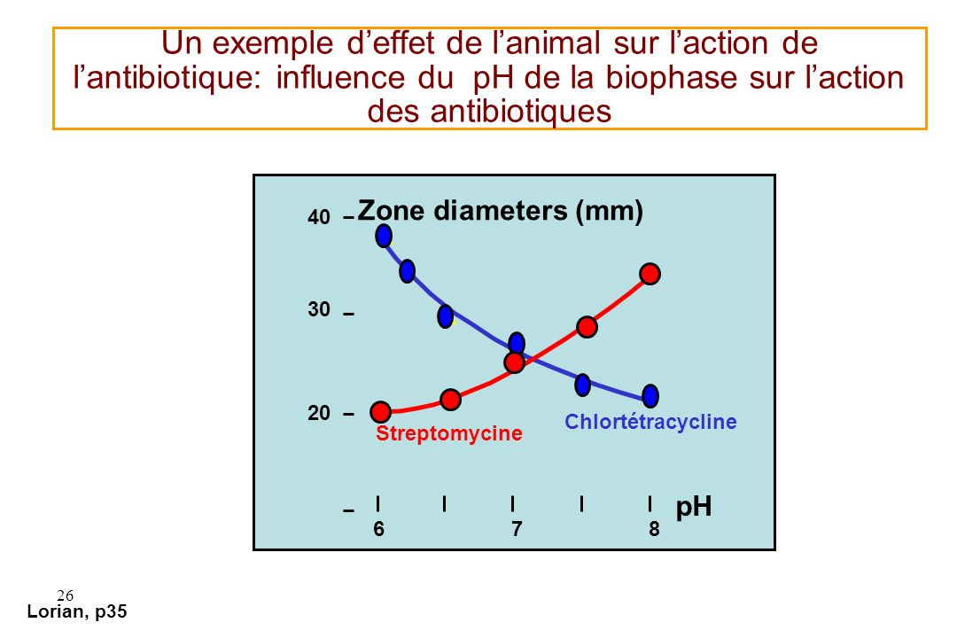 Un exemple d'effet de l'animal sur l'action de l'antibiotique: influence du pH de la biophase sur l'action des antibiotiques
