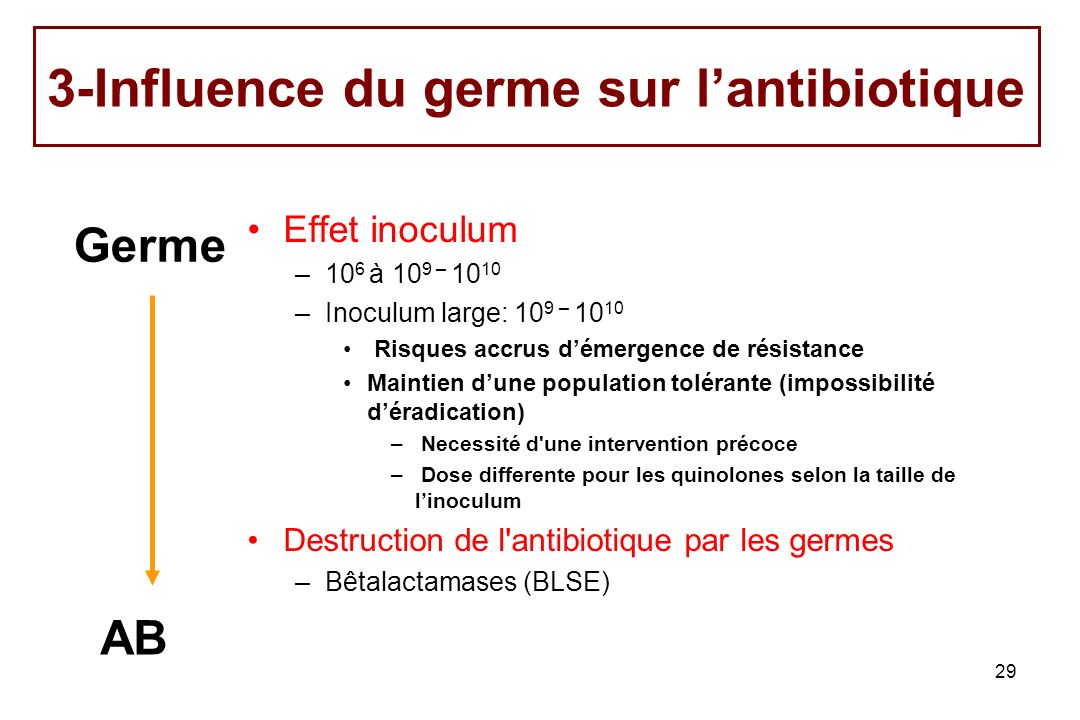 3-Influence du germe sur l'antibiotique