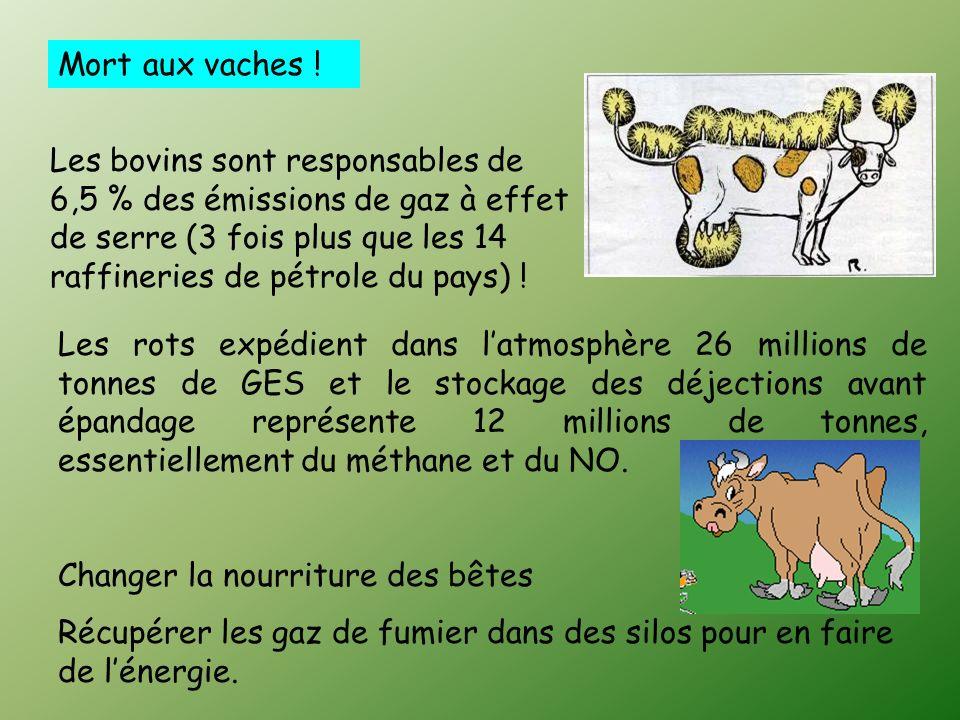 Mort aux vaches !