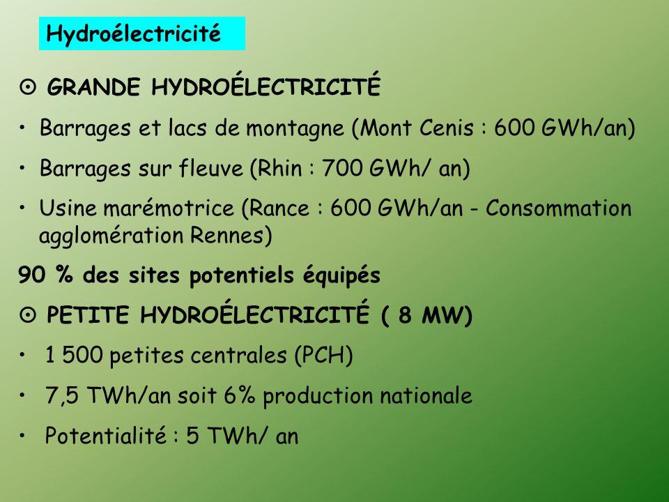 Hydroélectricité GRANDE HYDROÉLECTRICITÉ. Barrages et lacs de montagne (Mont Cenis : 600 GWh/an) Barrages sur fleuve (Rhin : 700 GWh/ an)