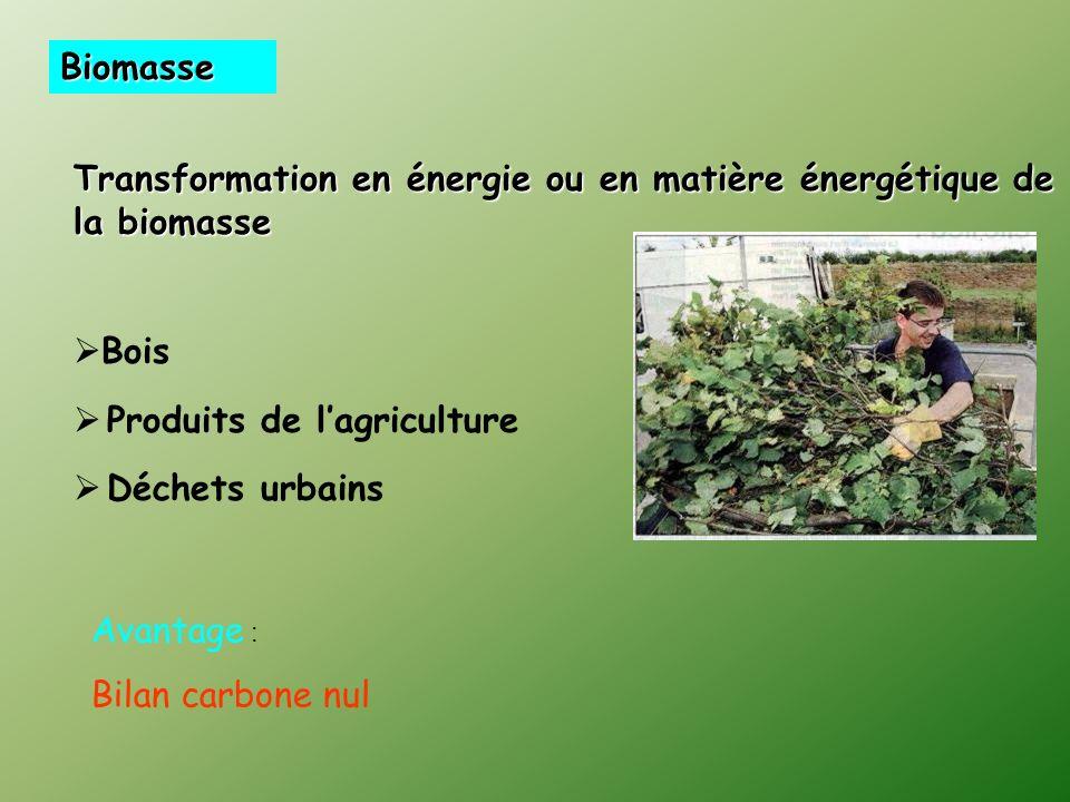 BiomasseTransformation en énergie ou en matière énergétique de la biomasse. Bois. Produits de l'agriculture.