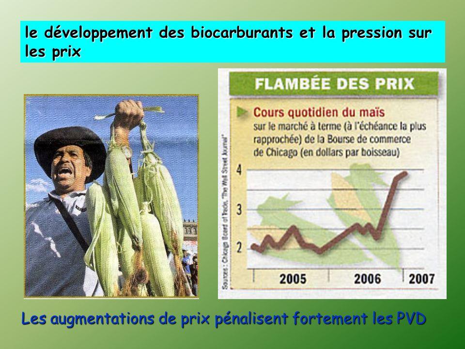 le développement des biocarburants et la pression sur les prix