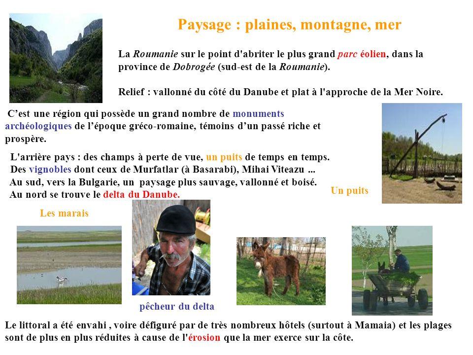 Paysage : plaines, montagne, mer