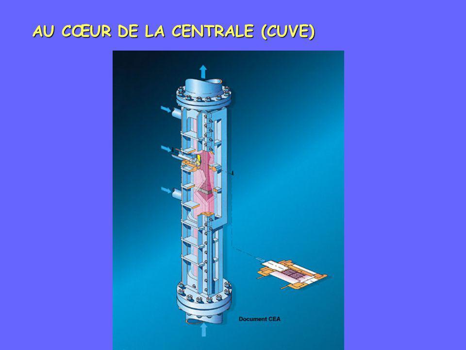 AU CŒUR DE LA CENTRALE (CUVE)