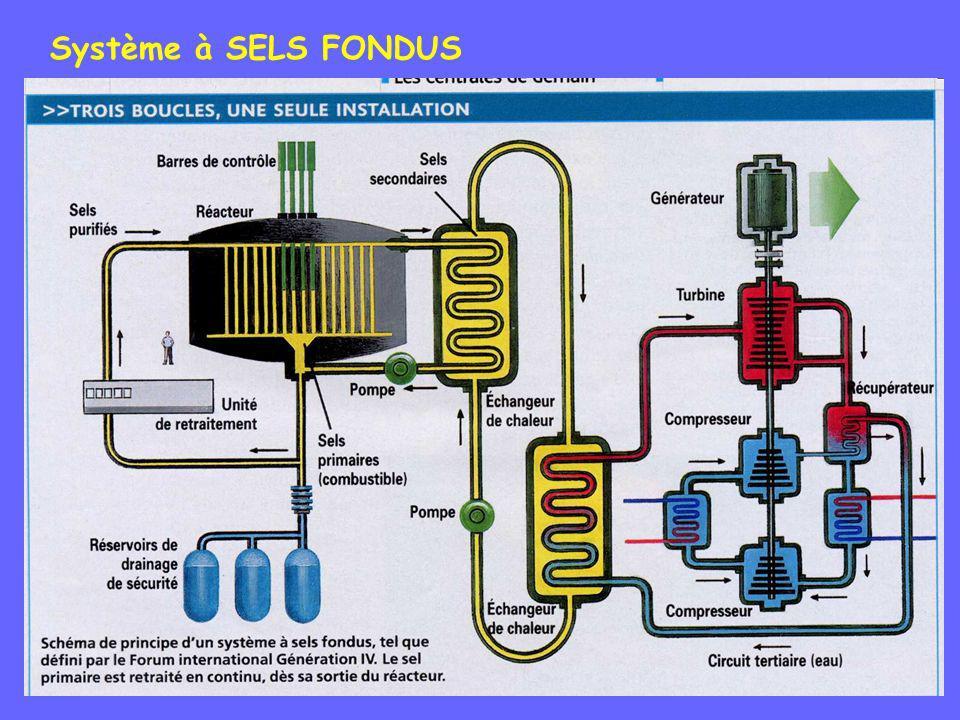 Système à SELS FONDUS