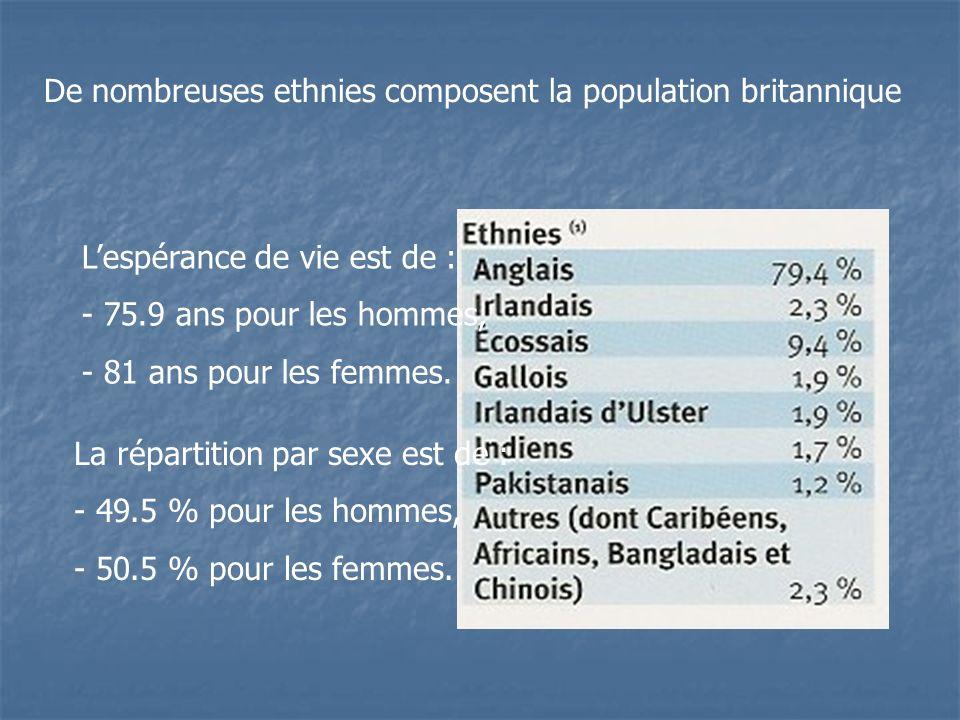 De nombreuses ethnies composent la population britannique