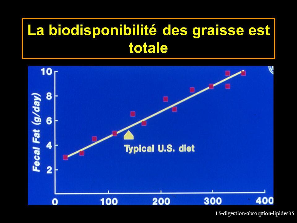 La biodisponibilité des graisse est totale