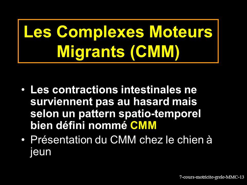 Les Complexes Moteurs Migrants (CMM)