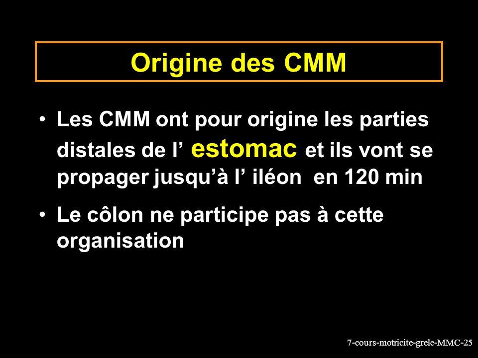 Origine des CMM Les CMM ont pour origine les parties distales de l' estomac et ils vont se propager jusqu'à l' iléon en 120 min.
