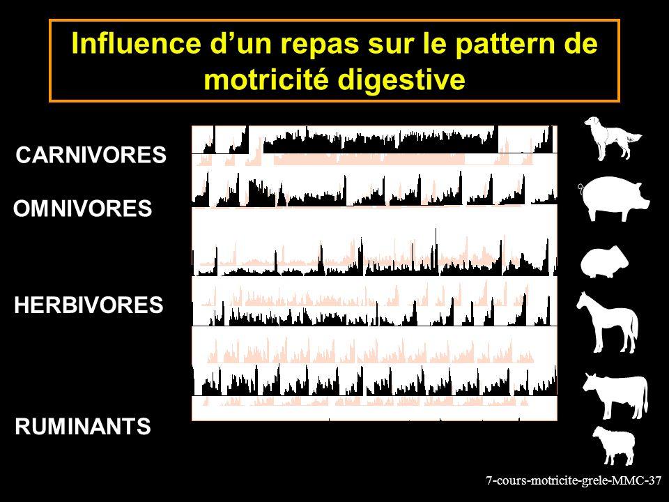 Influence d'un repas sur le pattern de motricité digestive