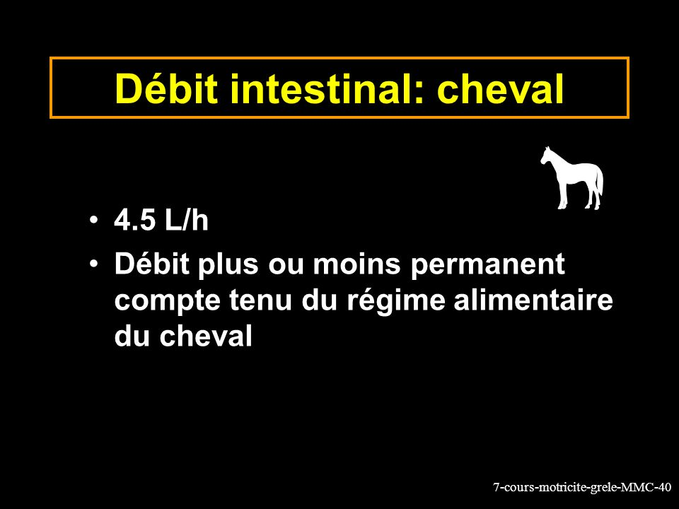 Débit intestinal: cheval