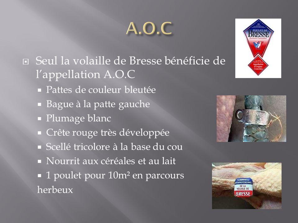 A.O.C Seul la volaille de Bresse bénéficie de l'appellation A.O.C