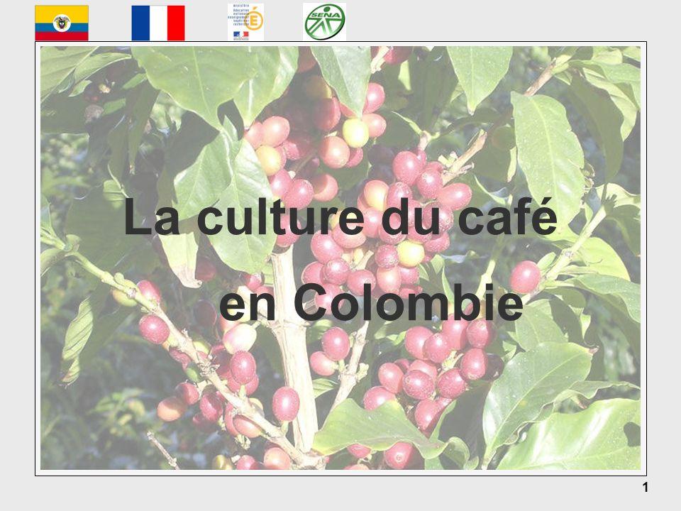 La culture du café en Colombie