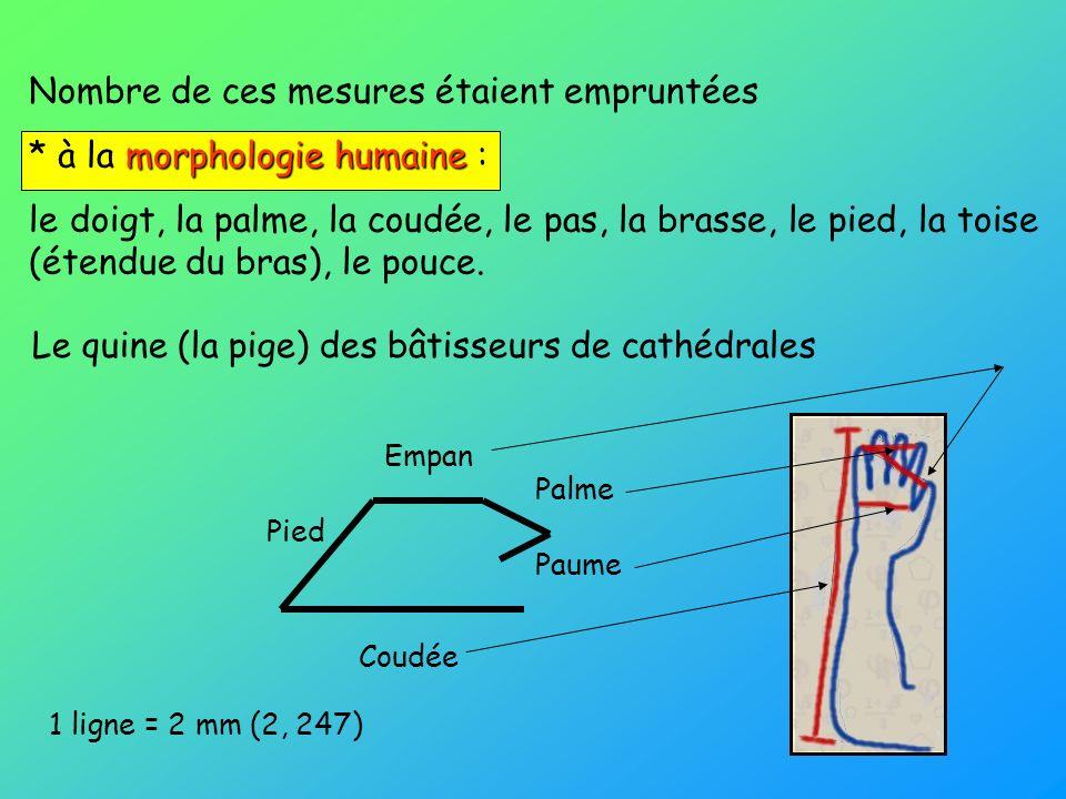 Nombre de ces mesures étaient empruntées * à la morphologie humaine :