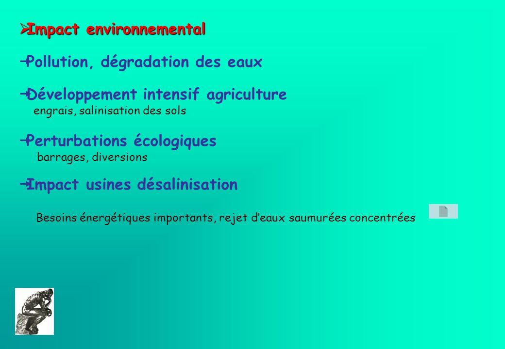 Impact environnemental Pollution, dégradation des eaux