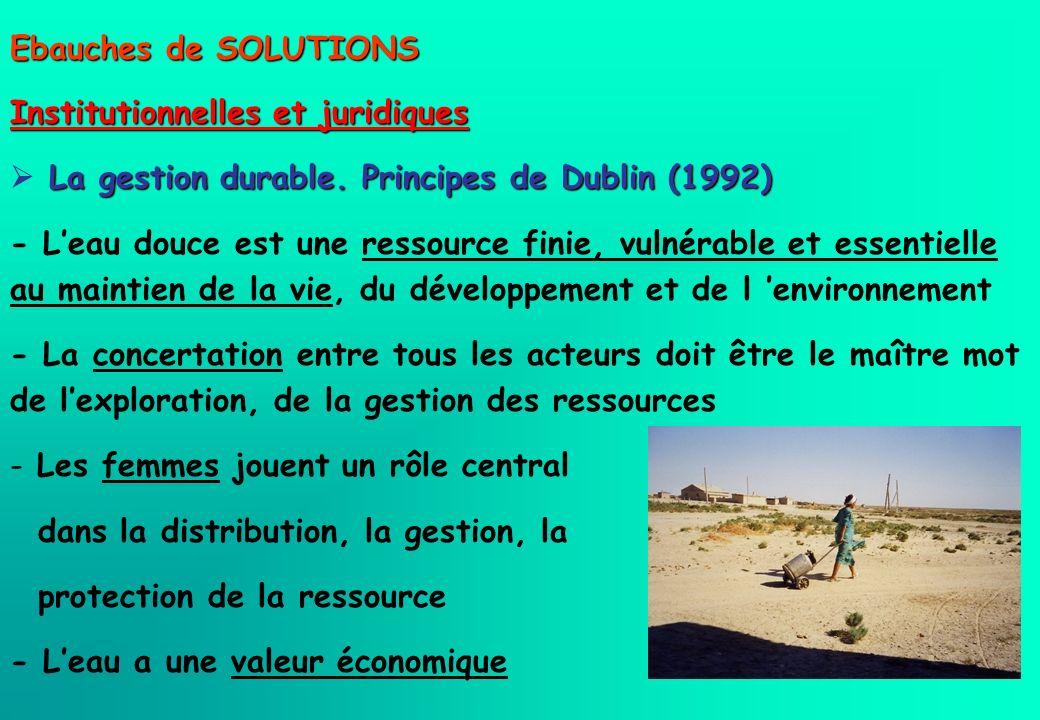Ebauches de SOLUTIONS Institutionnelles et juridiques.  La gestion durable. Principes de Dublin (1992)