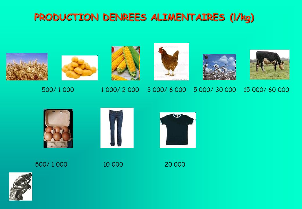PRODUCTION DENREES ALIMENTAIRES (l/kg)