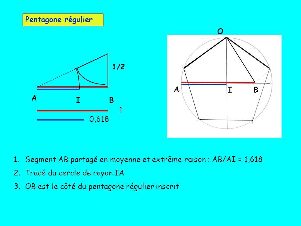 Pentagone régulier A. B. I. O. B. I. A. 1/2. 1. 0,618. Segment AB partagé en moyenne et extrême raison : AB/AI = 1,618.
