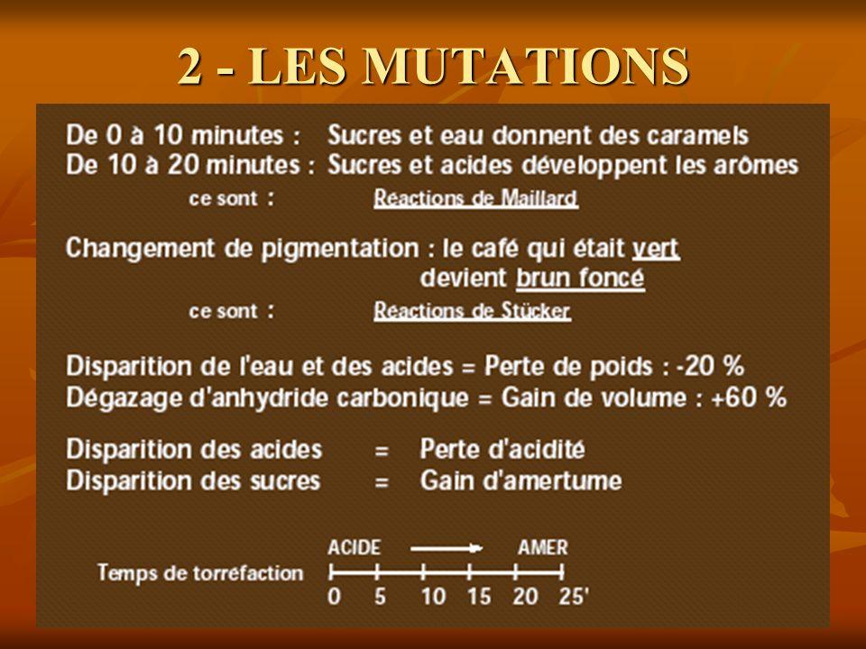 2 - LES MUTATIONS