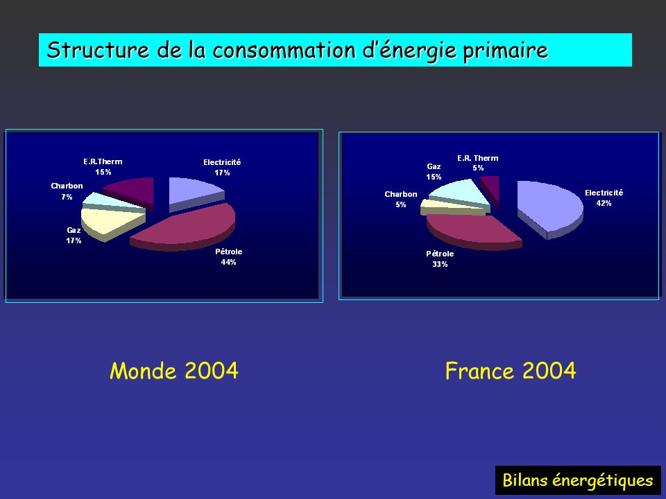 Structure de la consommation d'énergie primaire