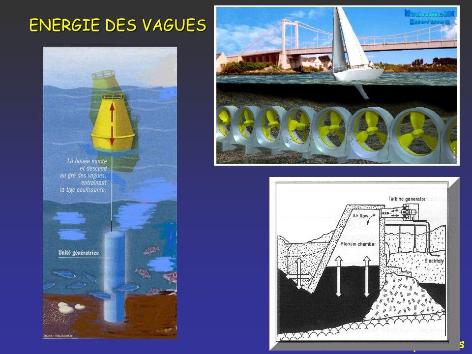 ENERGIE DES VAGUES Perspectives