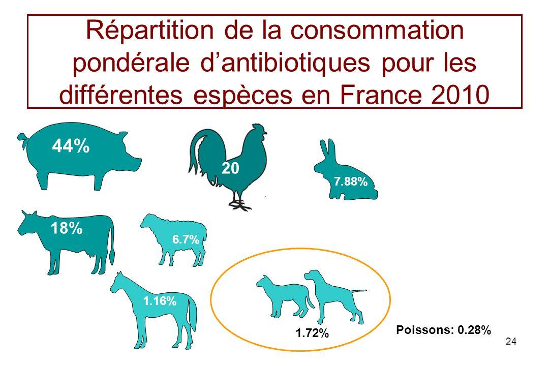 Répartition de la consommation pondérale d'antibiotiques pour les différentes espèces en France 2010