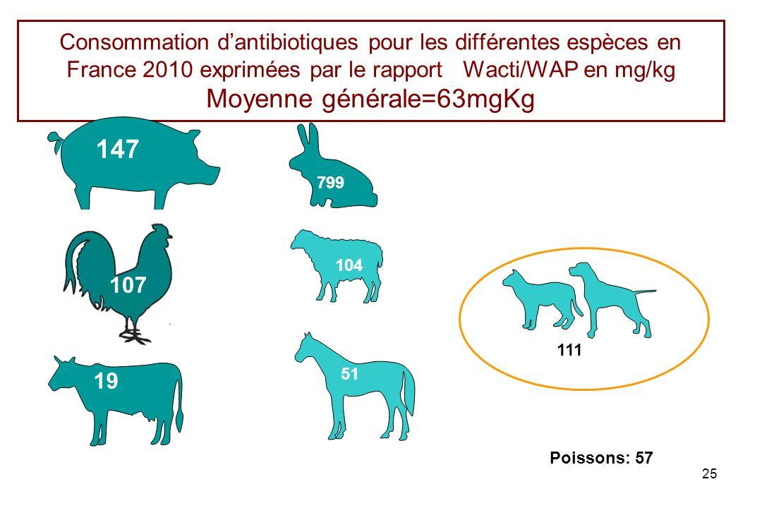 Consommation d'antibiotiques pour les différentes espèces en France 2010 exprimées par le rapport Wacti/WAP en mg/kg Moyenne générale=63mgKg